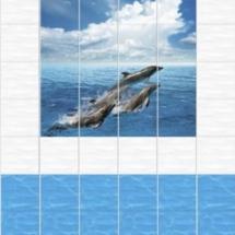 phoca_thumb_l_delfiny