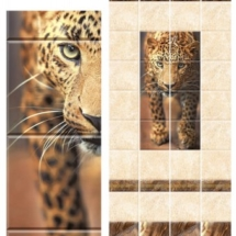 phoca_thumb_l_leopard